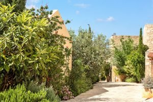 discover-the-hotel-kapsaliana-village-b